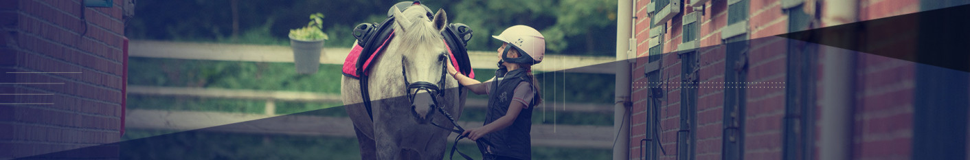 PROTECTION DE TRANSPORT DE PONEY
